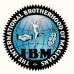 IBM Logo Color A